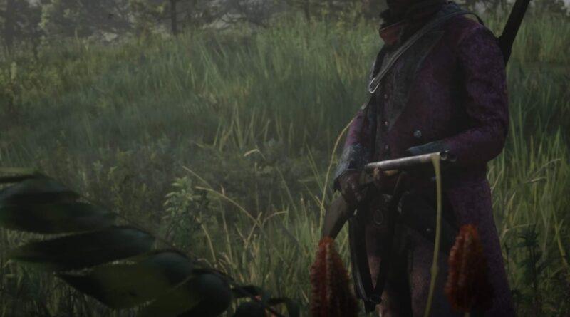 Red Dead Online: как получить винтовку для слона