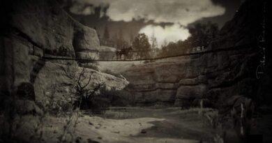 Red Dead Online: место легендарного бизона Виньяна