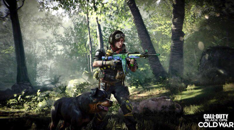 Как исправить ошибку пользовательского интерфейса 10002 в Call of Duty: Black Ops Cold War