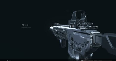 Лучшая загрузка M13 для Call of Duty: Warzone