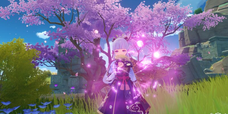Гайд по Genshin Impact - локации для выращивания цветущей сакуры для Аяки