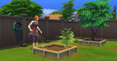 [Top 15] Лучшее удобрение для Sims 4, которое вы должны использовать
