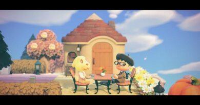 Руководство Animal Crossing New Horizons: 25 лучших советов