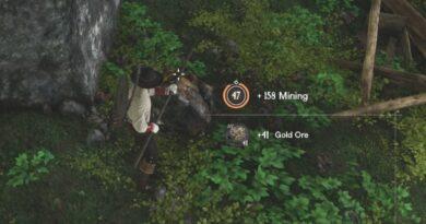 Где найти золотую руду в New World