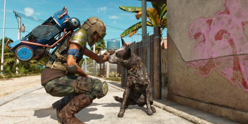 Гайд по амиго в Far Cry 6 Boom Boom: как получить вернувшегося спутника
