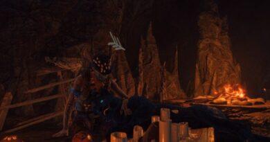 Гайд по Far Cry 6 Oluso amigo: как получить компаньона в виде черной пантеры